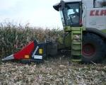 zbior-kukurydzy-na-ziarno-3