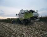 zbior-kukurydzy-na-ziarno-4